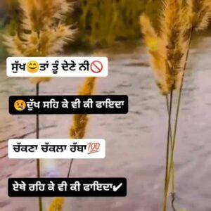 Chakkna Chak la Rabba Sad Punjabi Status Download Video sukh ta tu dene ni dukh seh ke vi ki faida? WhatsApp status video Sad Punjabi Status.