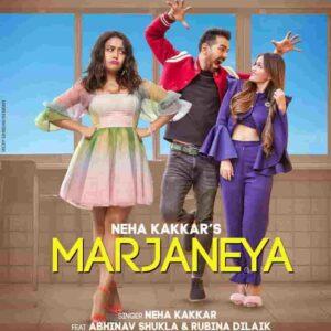 Neha Kakkar Marjaneya Lyrics Status Download Punjabi Song Marjaneya tu hun nai krda pyar asi tere nai rehna WhatsApp video black background.